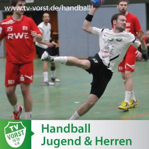Handball Jugend, Herren und Damen